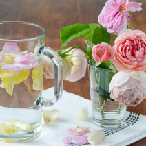 Bevanda dissetante alla rosa
