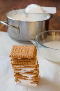 biscotti secchi quadrati