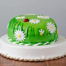 Torta compleanno swingcooking in pdz